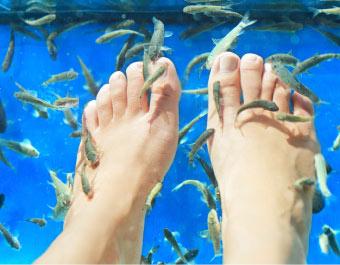 voetvissen